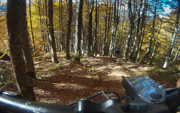 riders06.jpg