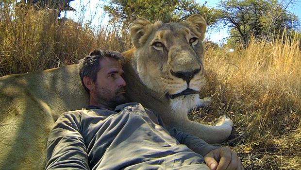gopro-lions