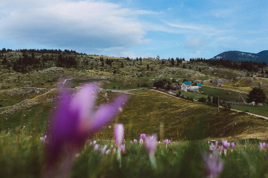 the-montenegro-experience-14
