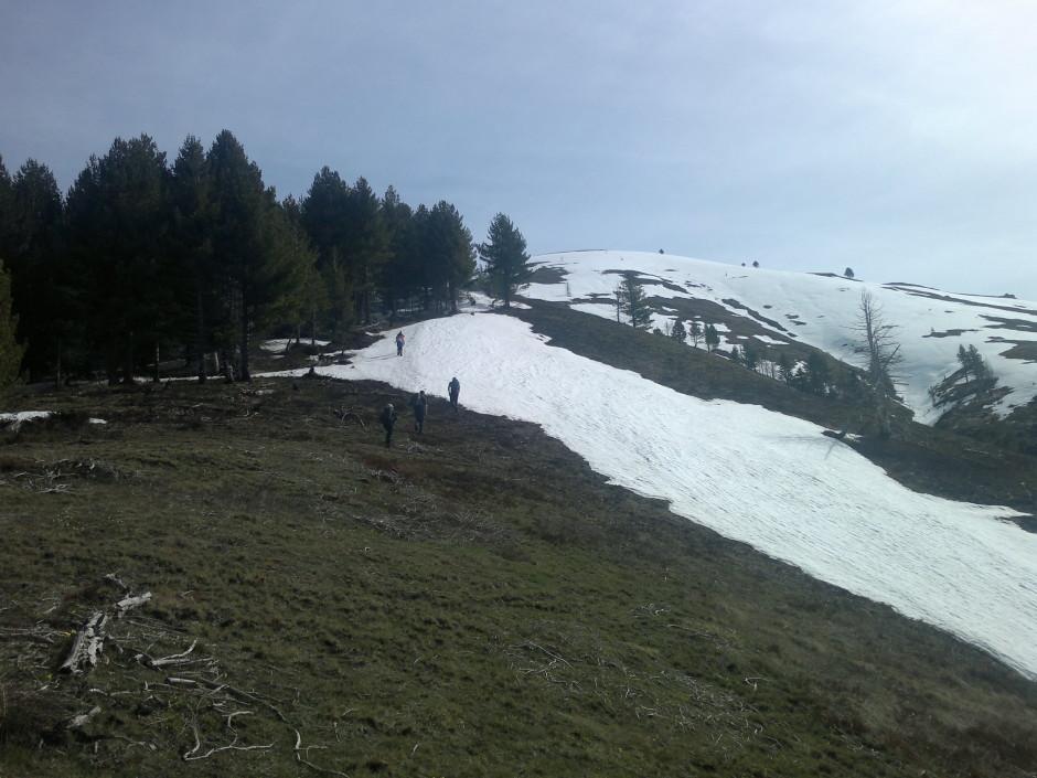013 -  prema Zavoju