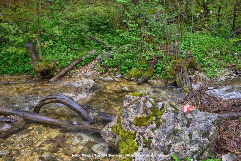 011-Staza-presijeca-rijeku-(odnosno-rijeka-stazu)